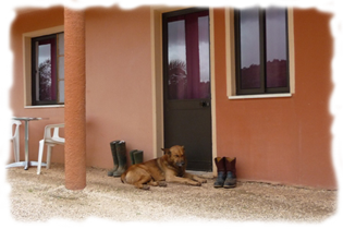 Horse Shoe Ranch - Algarve / Portugal